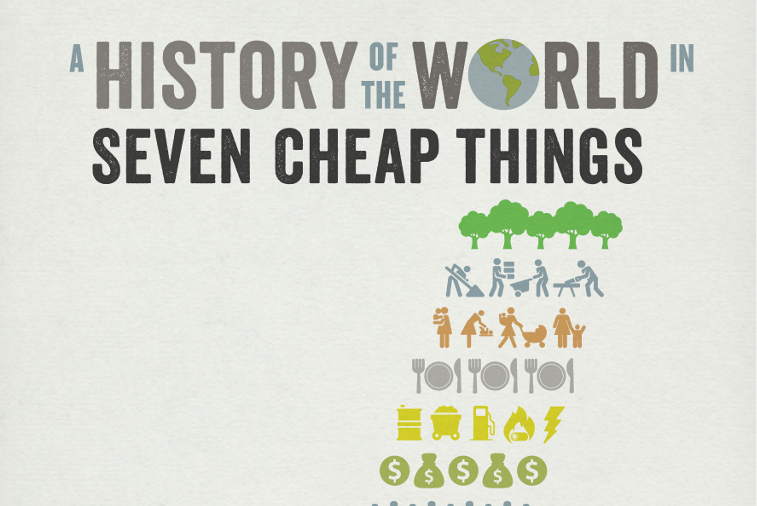 a history of the world in seven cheap things review