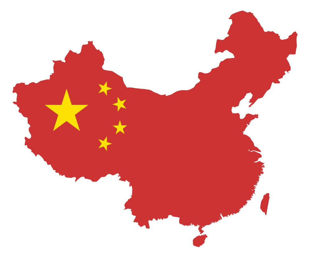 the china study book review